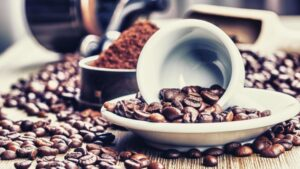 visualize brewing process for kopi luwak coffee beans