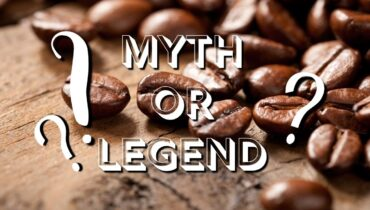 "cat poop coffee ""myth or legend"" article cover photo"