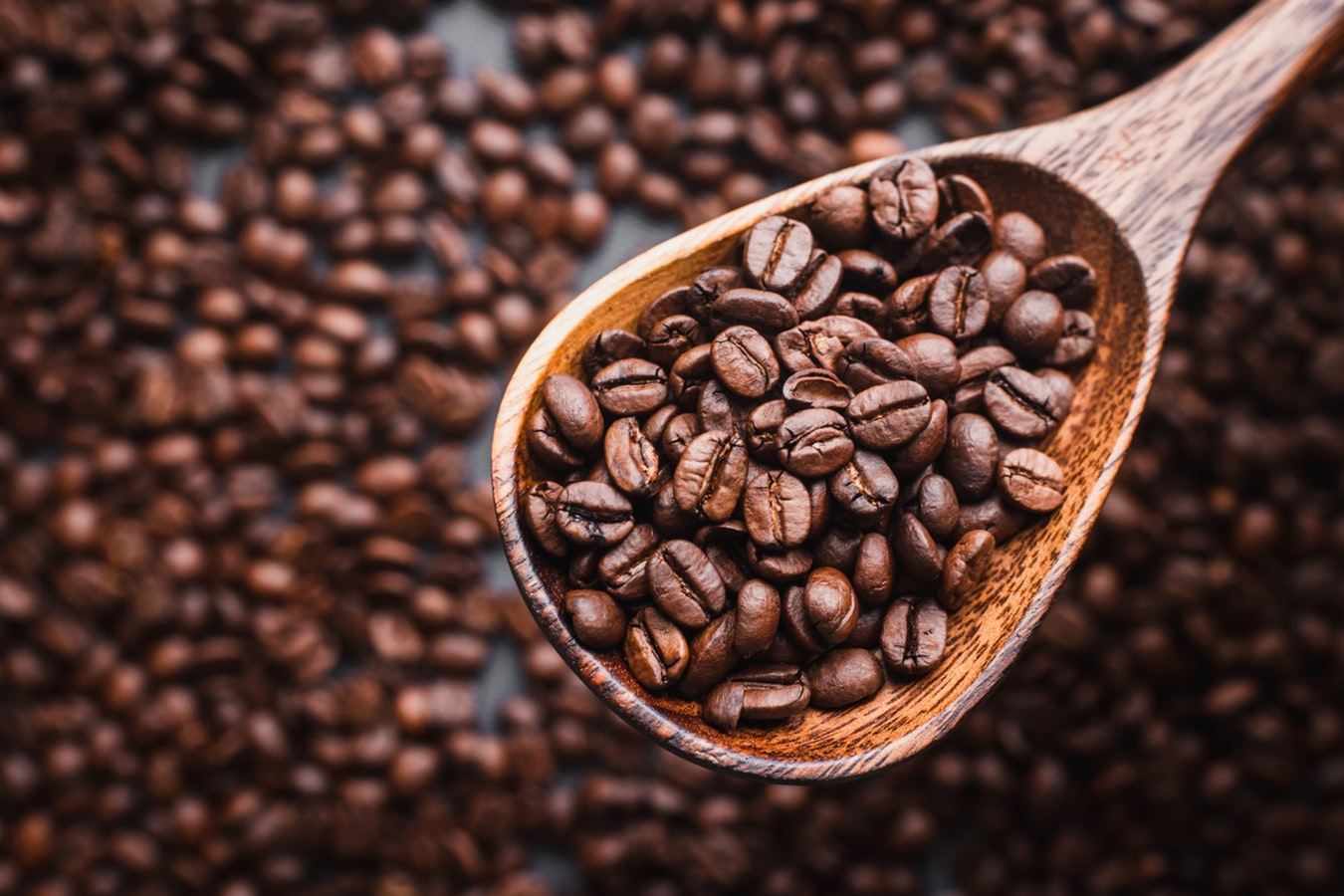 decorative image of coffee beans in a wooden spoon